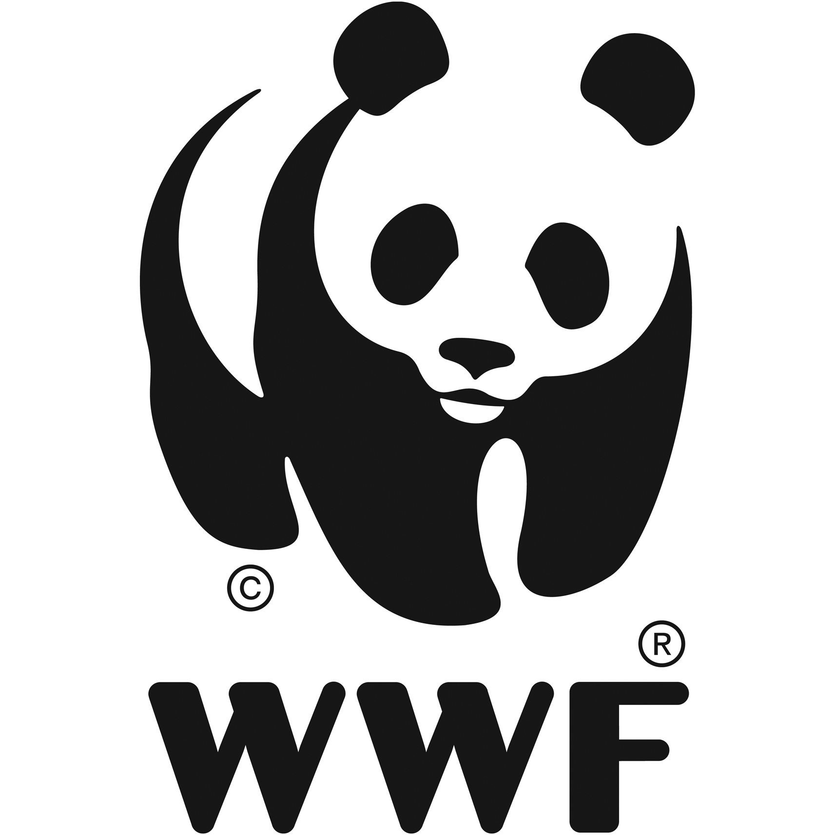 FAVPNG_world-wide-fund-for-nature-wwf-madagascar-logo-conservation-wwf-adria_H876S9cc